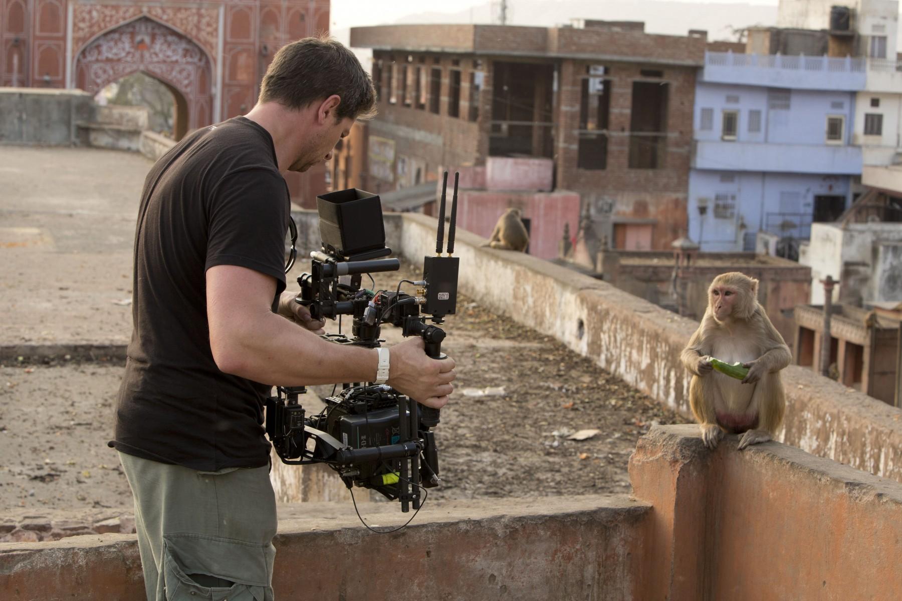 Mark MacEwen filmt die Makaken in Jaipur, die v�llig an Menschen gew�hnt sind. (Photography by Fredi Devas Copyright BBC NHU 2016 & polyband)