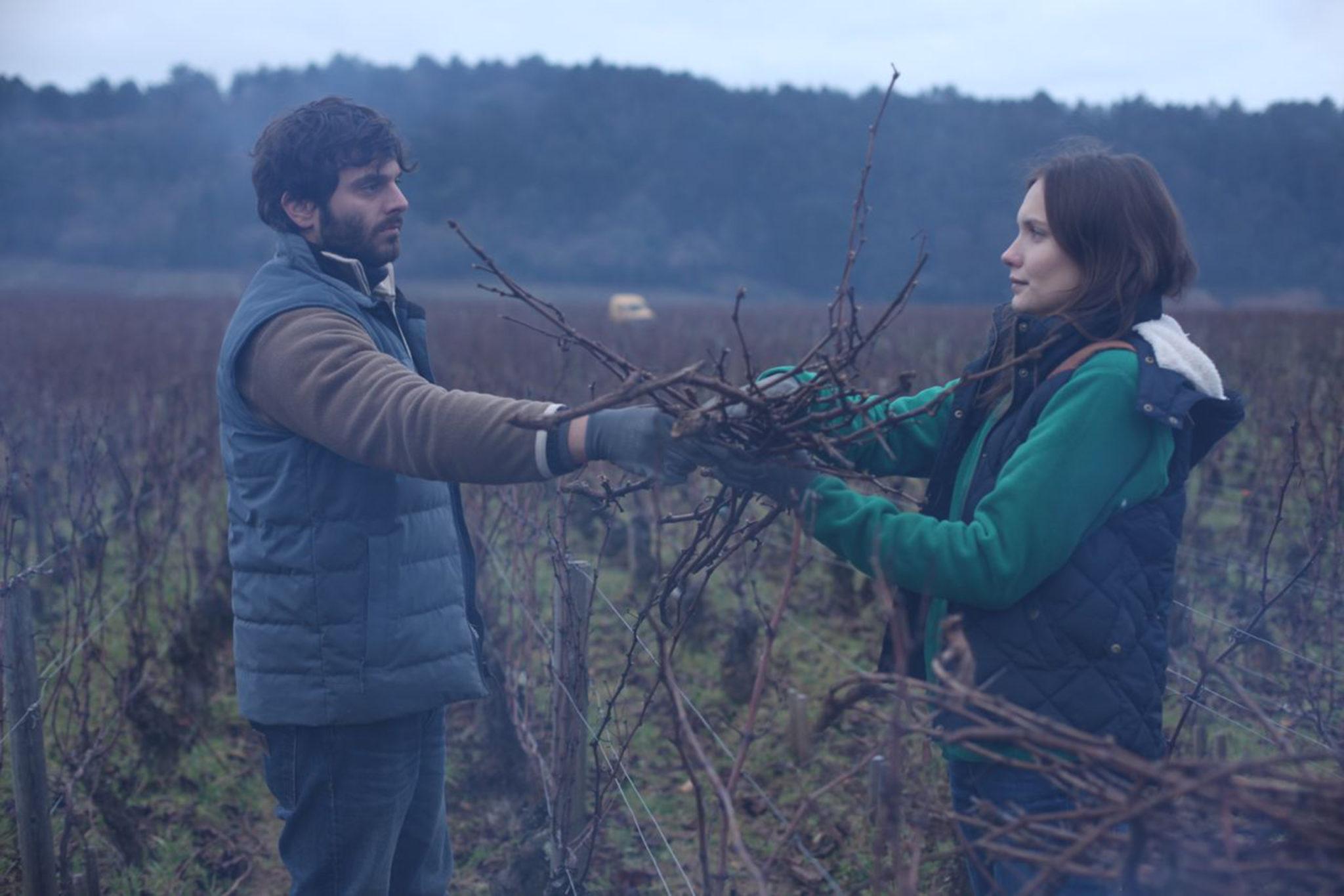 """Die Jahreszeiten des Lebens – """"Der Wein und der Wind"""" (Blu-ray-Kritik) 2"""